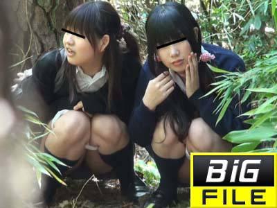 HD連れション盗撮FILE01 女子校生編